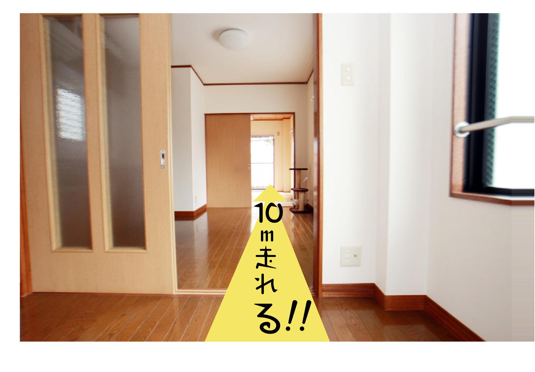 ★2にゃんOKで再登場★走ろう、ボール遊びしよう!@戸田公園駅