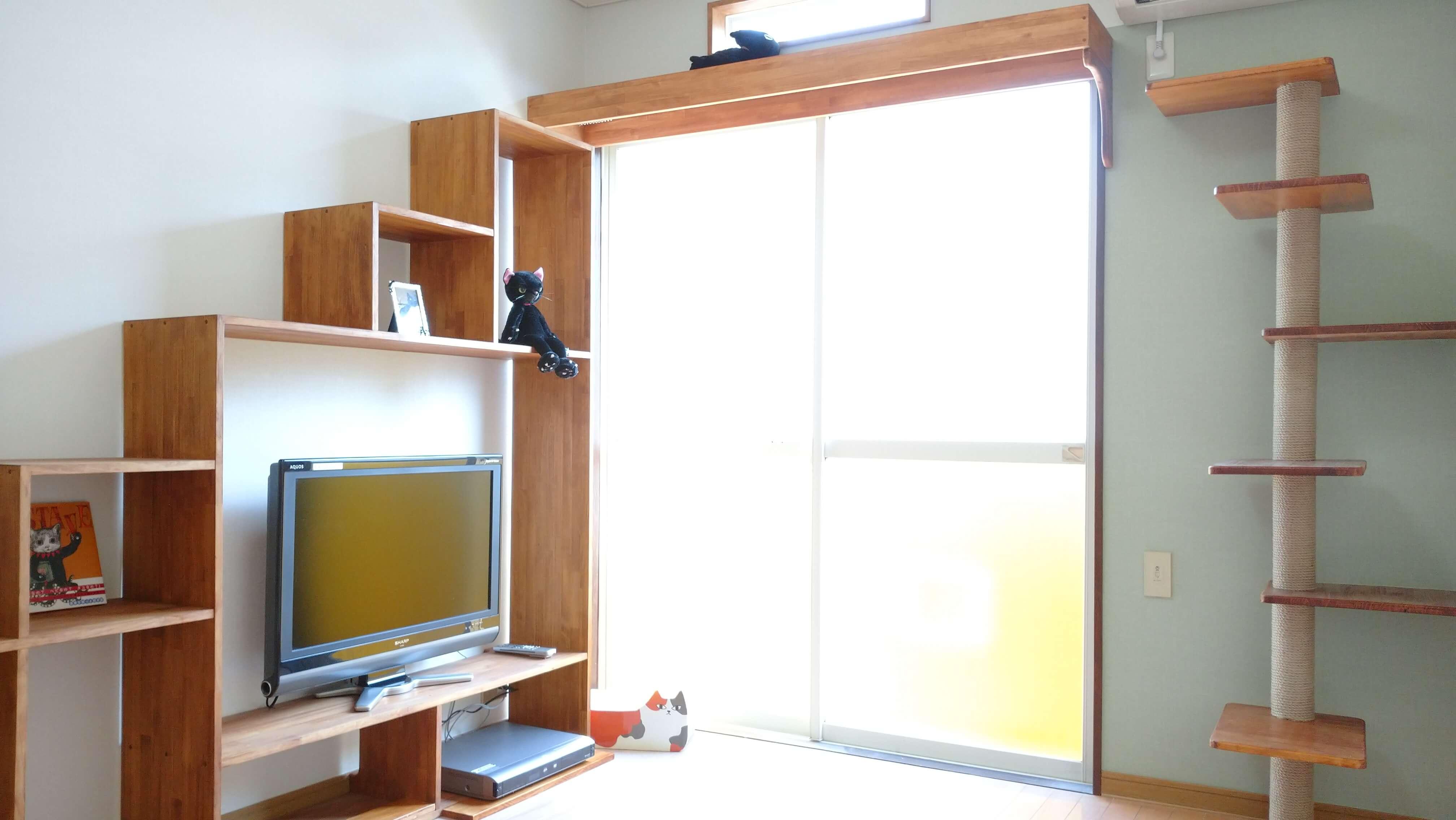 宮城県仙台市泉区より◆猫専用家具付きリノベーション物件出ました♪◆