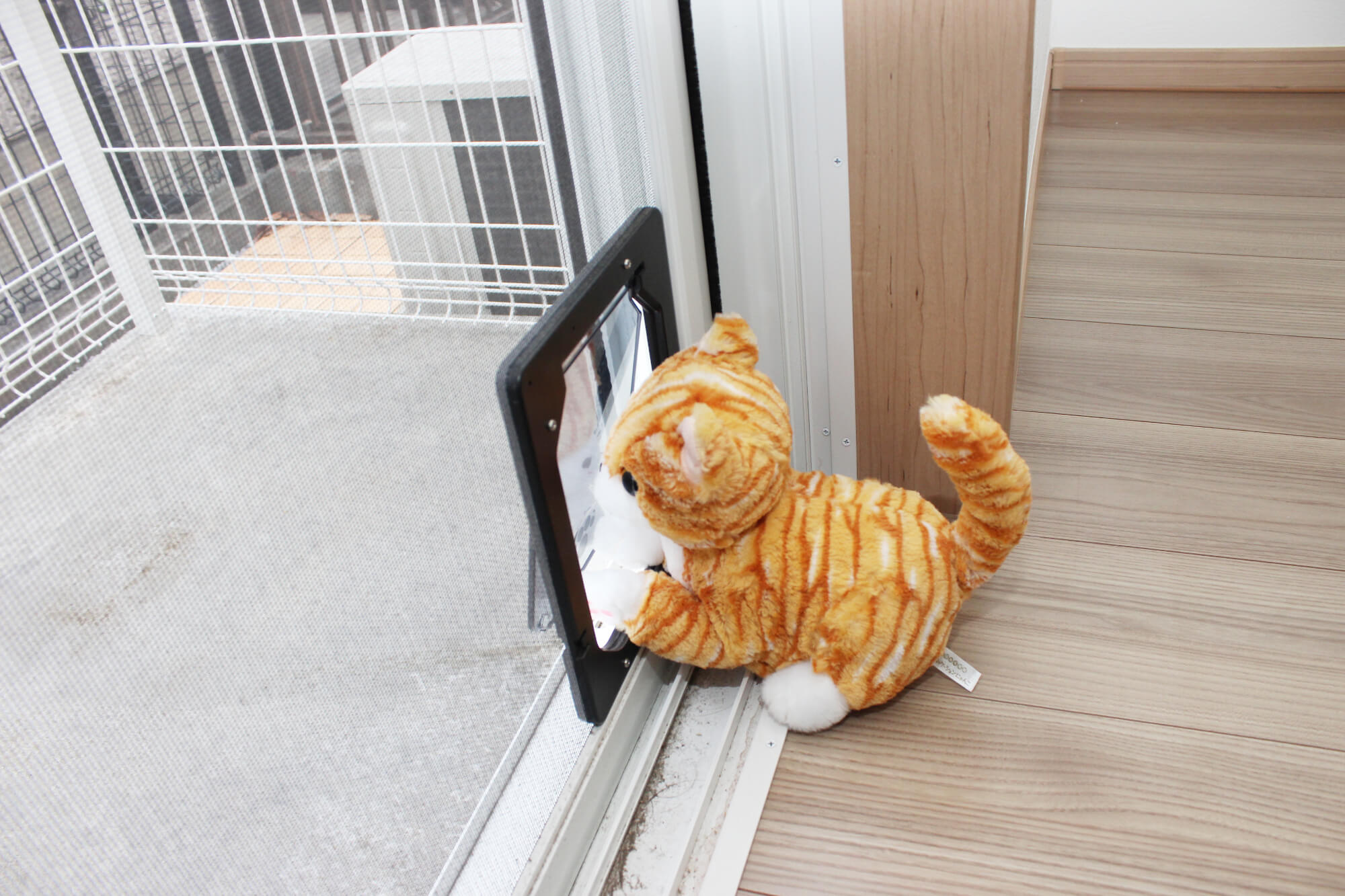テラスに出る網戸にはネコさん専用ドア付いてます。至れり尽くせりですにゃ。