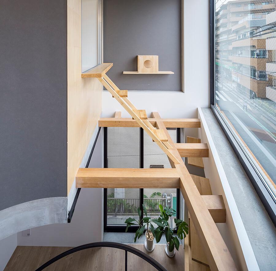 壁のキャットステップと螺旋階段から登っていけるキャットウォークは高い窓まで辿り着けます。これは登るしかないにゃ。