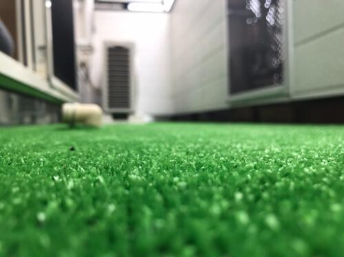 バルコニーにも猫ちゃんに嬉しいポイントがたくさんあります! 足腰の負担も考え、地面には人工芝を設置しました。
